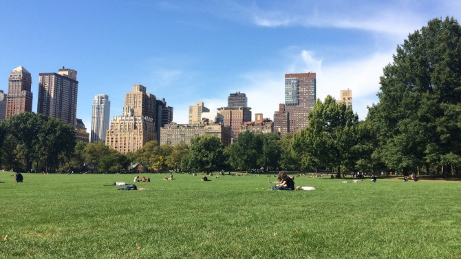 The Sheep Meadow