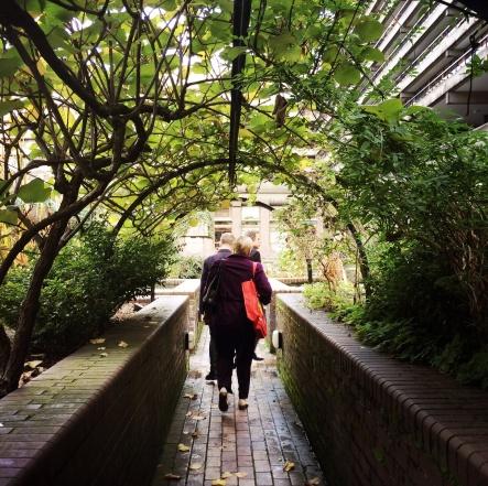 Barbican sunken gardens