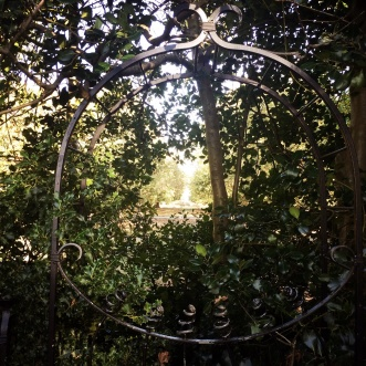 We could see St Paul's through this hedge.
